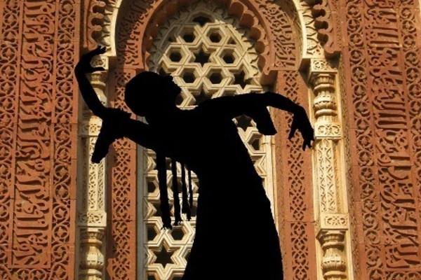 Recent Activities & Collaboration with Zorongo Flamenco